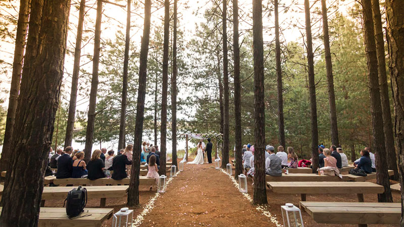 Haycroft Farm forest wedding KZN