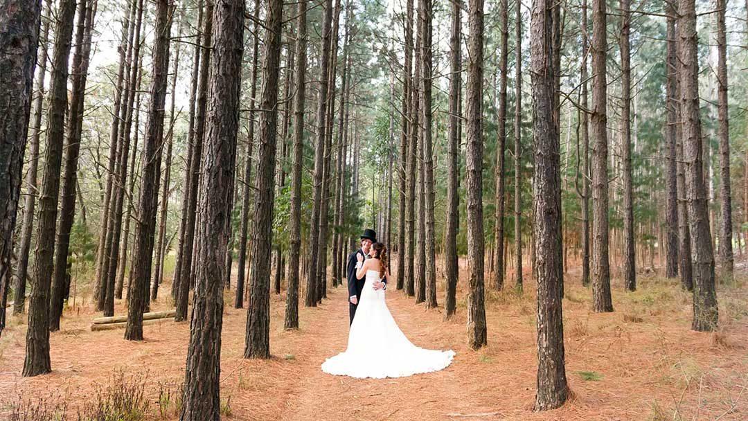 Lauren and Paul's beautiful wedding at Haycroft Farm